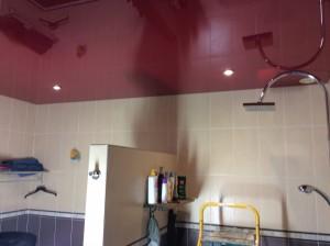 Steve Robert plafond tendu