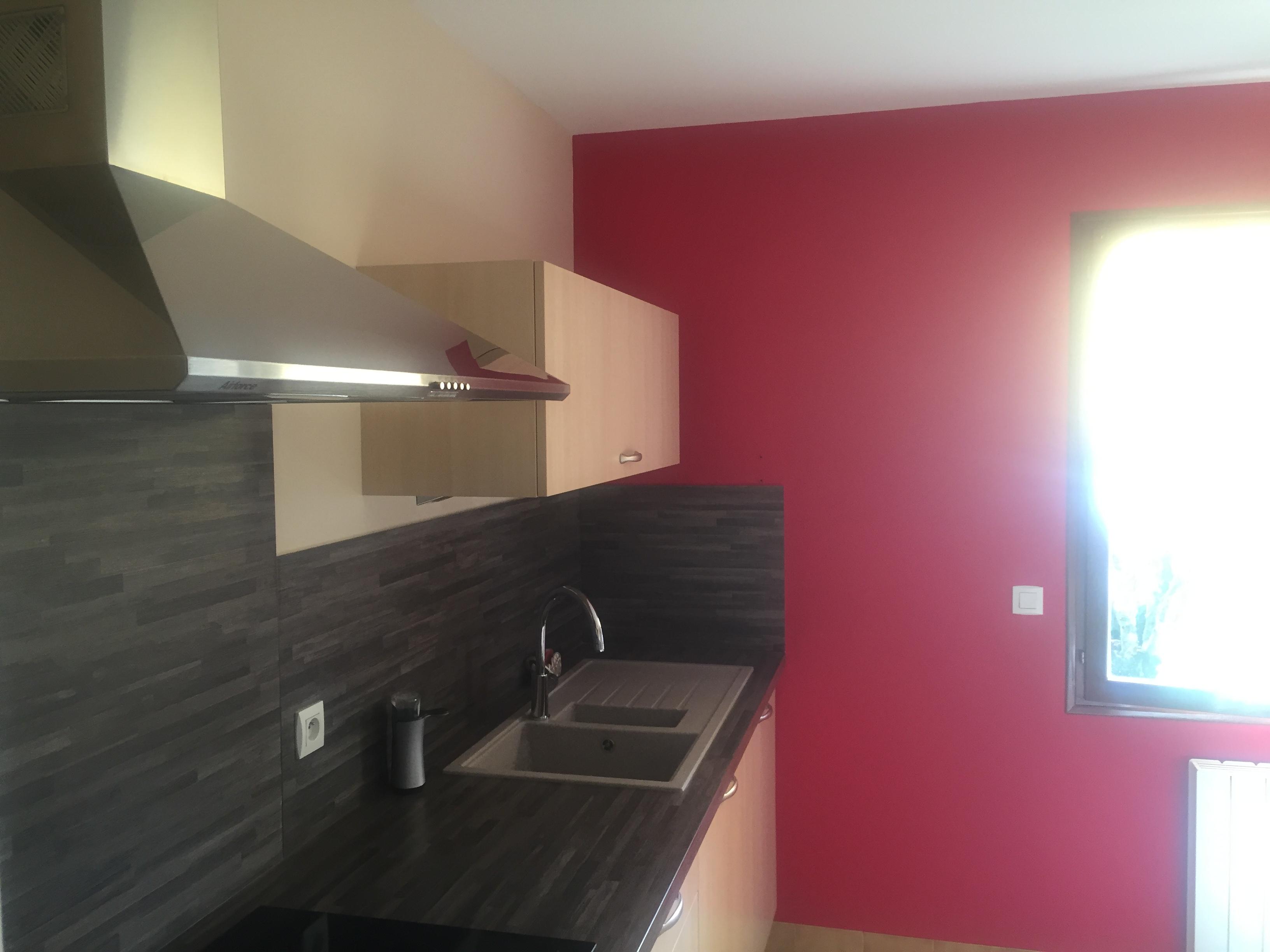R novation d 39 une cuisine en peinture steve robert peinture for Peinture cuisine lessivable